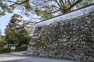 岡山城石垣(横構図)の写真素材 [FYI04819920]