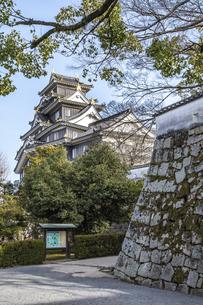 岡山城石垣(縦構図)の写真素材 [FYI04819921]