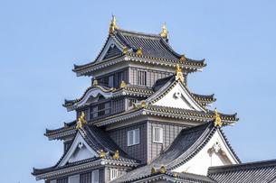 岡山城天守閣(横構図・大)の写真素材 [FYI04819922]