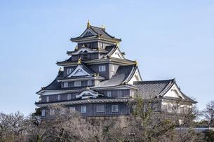 岡山城(横構図)の写真素材 [FYI04819940]