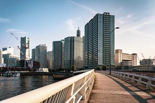 【神奈川県 横浜市】都市の街並み ビル街の写真素材 [FYI04819949]