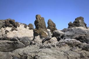 【地学教材用】 房総半島のオリストリスとオリストストロームの写真素材 [FYI04820057]