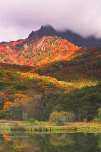秋の戸隠連山 鏡池と紅葉に朝焼け雲の写真素材 [FYI04820081]