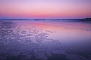 厚岸湖の朝と氷の写真素材 [FYI04820237]