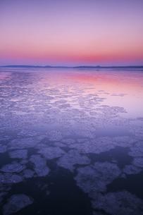 厚岸湖の朝と氷の写真素材 [FYI04820242]