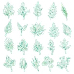 水彩画風の葉っぱイラストのイラスト素材 [FYI04820521]