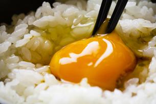 卵かけご飯の写真素材 [FYI04821194]