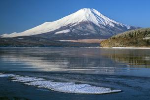山中湖からの富士山の写真素材 [FYI04821369]