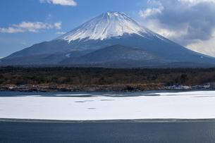 精進湖からの富士山の写真素材 [FYI04821374]
