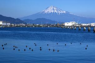 清水折戸湾と富士山の写真素材 [FYI04821378]