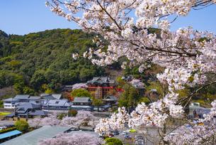 佐賀県 祐徳稲荷神社の写真素材 [FYI04821668]