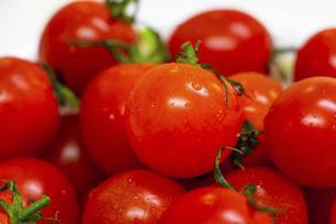 真っ赤に熟したミニトマトの写真素材 [FYI04821678]