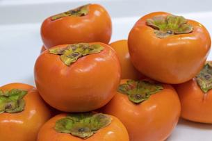 山積みにされた柿の写真素材 [FYI04821681]