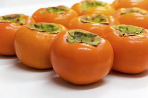 よく熟した柿の果実の写真素材 [FYI04821684]