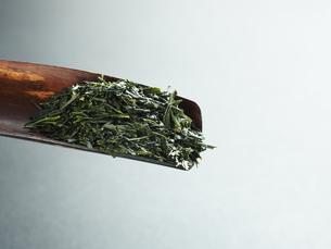 煎茶の写真素材 [FYI04821879]