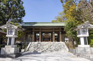 東郷神社 入口の写真素材 [FYI04822198]