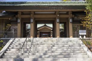 東郷神社 入口の写真素材 [FYI04822199]