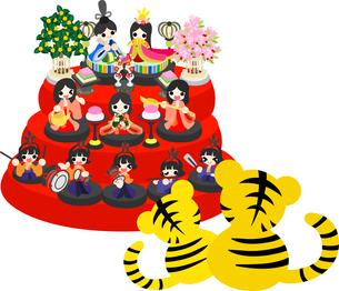 ひな祭りの日に雛人形を眺める可愛い虎ちゃん達のイラストのイラスト素材 [FYI04822234]