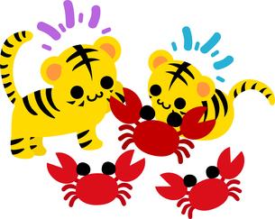 カニと一緒に遊ぶ可愛い虎ちゃん達のイラストのイラスト素材 [FYI04822238]