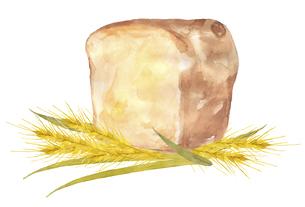 パンと小麦 水彩画のイラスト素材 [FYI04822800]