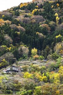 紅葉を見る山里風景の写真素材 [FYI04822804]