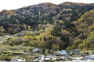 紅葉を見る山里風景の写真素材 [FYI04822805]
