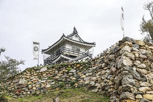 葵紋ののぼり旗が立つ浜松城天守と石垣の写真素材 [FYI04822825]