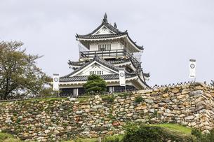 葵紋ののぼり旗が立つ浜松城天守と石垣の写真素材 [FYI04822827]