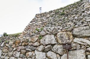 葵紋ののぼり旗が立つ浜松城石垣の写真素材 [FYI04822830]