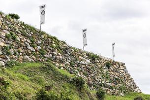 葵紋ののぼり旗が立つ浜松城石垣の写真素材 [FYI04822831]