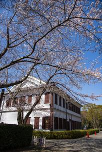 房総のむら洋館と桜の写真素材 [FYI04822854]