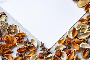 コンクリートの平面に置かれた白い紙と植物のオブジェの写真素材 [FYI04823436]