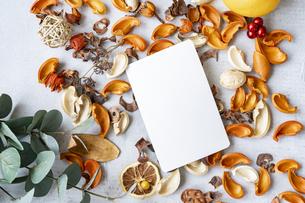 コンクリートの平面に置かれた白い紙と植物のオブジェの写真素材 [FYI04823440]