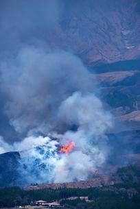 熊本県 阿蘇山の野焼きの写真素材 [FYI04823697]