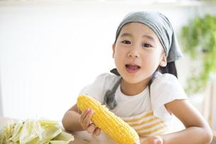 とうもろこしを食べている女の子の写真素材 [FYI04823870]