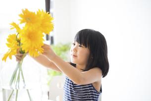 黄色いお花を花瓶に生けている女の子の写真素材 [FYI04823879]