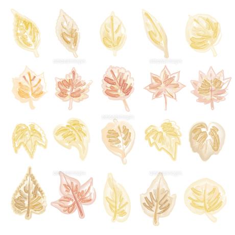 水彩画風の葉っぱイラストのイラスト素材 [FYI04824114]