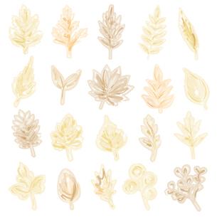水彩画風の葉っぱイラストのイラスト素材 [FYI04824140]