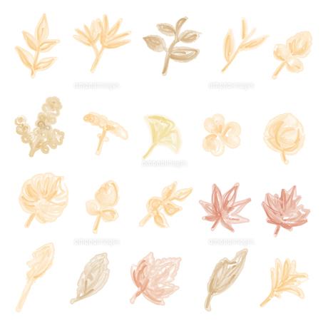 水彩画風の葉っぱイラストのイラスト素材 [FYI04824142]