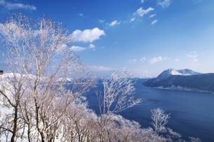 摩周湖と樹氷の写真素材 [FYI04824508]