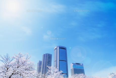 超高層ビルと光の写真素材 [FYI04824828]