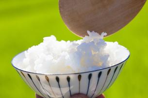 茶碗によそう炊き立ての白米の写真素材 [FYI04826006]