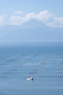 有明海塩屋漁港の海苔網と雲仙普賢岳の写真素材 [FYI04826088]