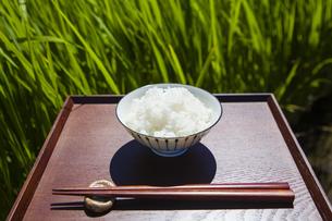 お茶碗に入ったご飯の写真素材 [FYI04826157]