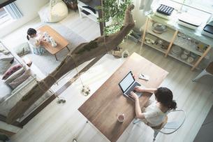 テレワークイメージ・リビングルームで仕事をする女性と遊ぶ子どもの写真素材 [FYI04826457]