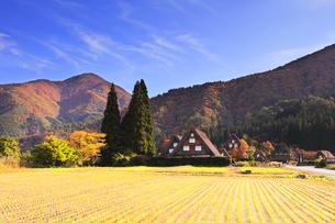 秋の白川郷 紅葉の山並みと秋の空の写真素材 [FYI04827281]