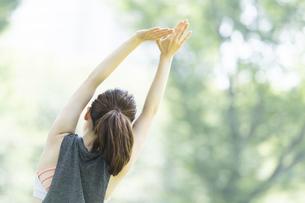 公園でヨガ・ストレッチをする女性の後ろ姿の写真素材 [FYI04827908]