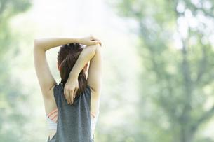 公園でヨガ・ストレッチをする女性の後ろ姿の写真素材 [FYI04827909]