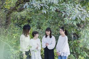 談笑する女性4人の写真素材 [FYI04827947]