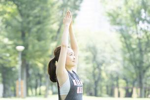 公園でヨガをする女性の写真素材 [FYI04828745]